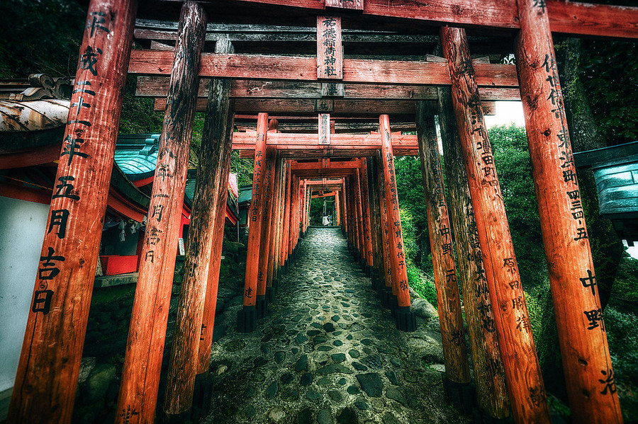 Torii of the Yutoku Inari ShrineIf you ever Visit the Yutoku Inari Shrine in Japan you can hike up the mountain it's built up. You pass through many of these structures on the way to the top where you'll find an incredible view. See more about my photography at http://alikgriffin.com